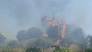Μεγάλη πυρκαγιά στα Μέγαρα