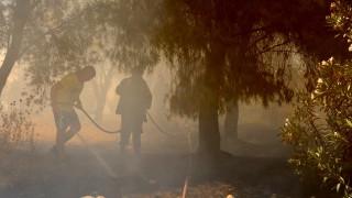 Συνελήφθη 52χρονος για τη πυρκαγιά στα Μέγαρα