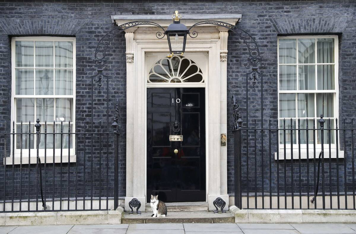 Brexit 10 cat 2016 06 24T060138Z 1976148174 LR1EC6O0GQFO7 RTRMADP 3 BRITAIN EU