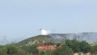 Υπό έλεγχο η πυρκαγιά στον Βαρνάβα Αττικής