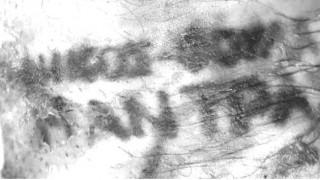 Η αστυνομία δίνει φώτο από τατουάζ στην προσπάθεια αναγνώρισης απανθρακωμένου άντρα