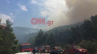 «Μάχη» με τις φλόγες σε δύο μέτωπα (vid+pics)