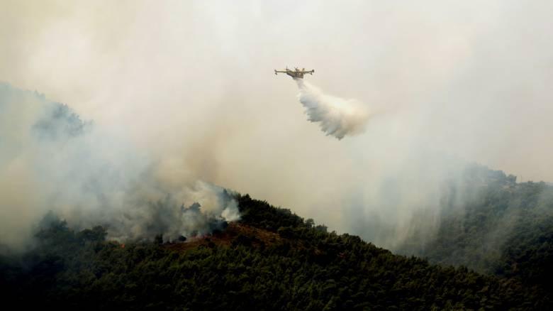 Μάχη με τη φωτιά στα Δερβενοχώρια - Κόπασαν οι άνεμοι δεν κινδυνεύουν σπίτια