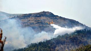 Πυρκαγιά σε απόσταση αναπνοής από το αεροδρόμιο της Κέρκυρας