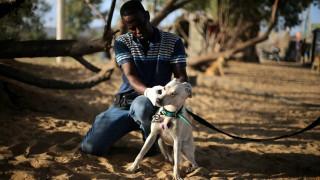 Ο Παλαιστίνιος Dr. Dolittle που ξοδεύει χιλιάδες δολάρια για να σώσει τα αδέσποτα της Γάζας (pics)