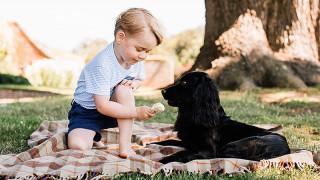 Υπάρχει ένα τραγικό λάθος σε αυτό το γενέθλιο πορτρέτο του πρίγκιπα Τζορτζ. Το αναγνωρίζετε;