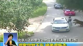 Τίγρης αρπάζει γυναίκα μπροστά στα μάτια της οικογένειά της (vid)