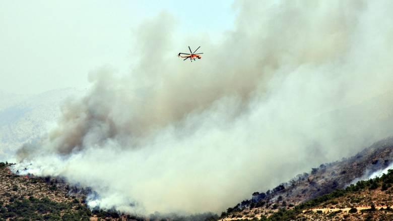 Η περιφερειάρχης Β. Αιγαίου στο CNN Greece για τη φωτιά στη Χίο