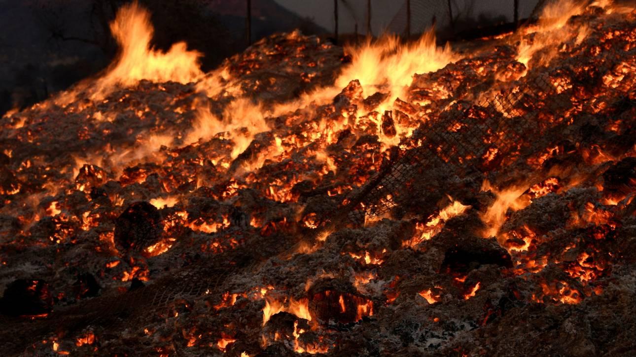 ΗΠΑ: Οι φλόγες απειλούν χιλιάδες σπίτια κοντά στην Καλιφόρνια