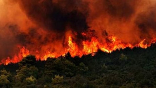 Εύβοια:συμφέροντα πίσω από την φωτιά «βλέπουν» οικολογικές οργανώσεις