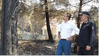 Κυρ. Μητσοτάκης: Χρέος της πολιτείας να αναγεννήσει το δάσος της Λίμνης