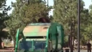 Αρκούδα γνωρίζει το New Mexico... καβάλα σε απορριματοφόρο (vid)