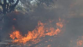 Πυρκαγιά σε εξέλιξη κοντά στο Πόρτο Χέλι