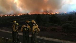 Ισπανία: Τραγωδία με δράστη Γερμανό που έβαλε φωτιά σε δάσος όταν... (pics)