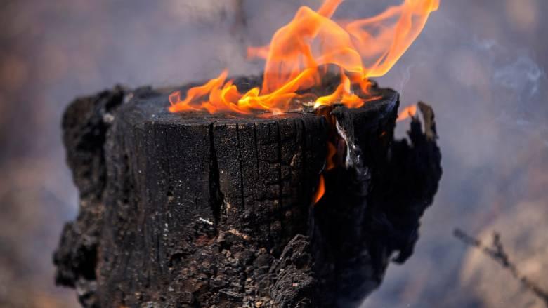 Mεγάλες πυρκαγιές στην Πορτογαλία