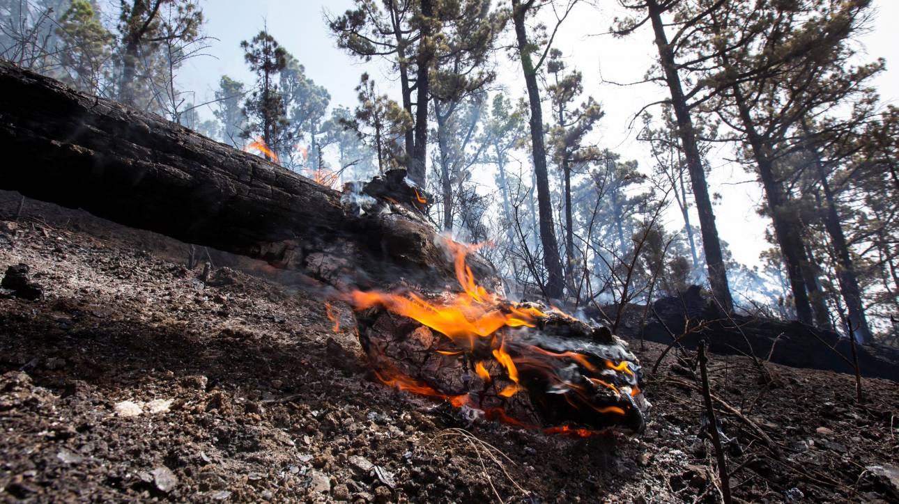 Μαίνονται οι φωτιές στην Πορτογαλία