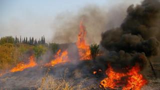 Διπλό μέτωπο φωτιάς στην Εύβοια