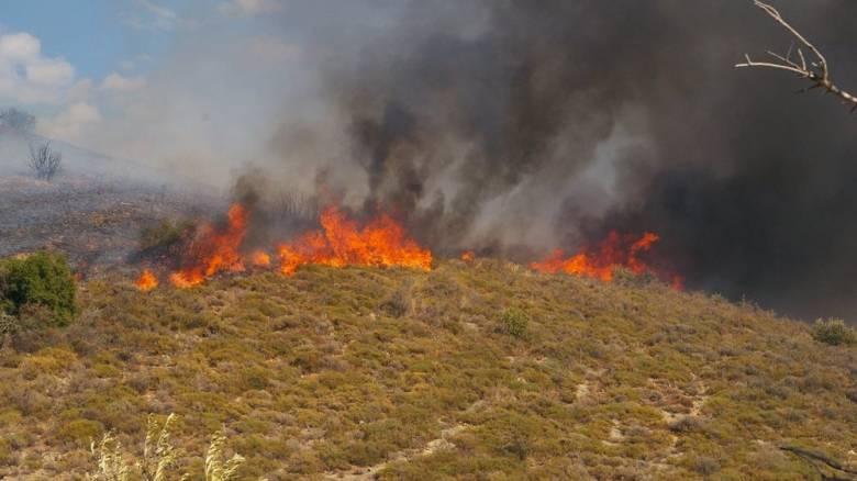 Υπό μερικό έλεγχο η φωτιά στην Άνω Ποταμιά Ακράτας της Αχαΐας