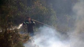Υπό έλεγχο η φωτιά στην Κατούνα Αιτωλοακαρνανίας