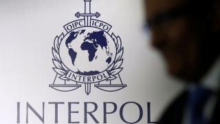 Ίντερπολ: Καταζητείται Ελληνίδα για ηλεκτρονική πειρατεία