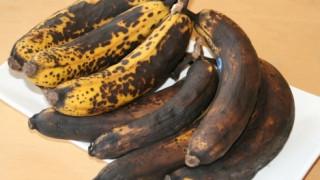 Διαβάστηκε με ελληνική καθοδήγηση το DNA του μύκητα που καταστρέφει τις μπανάνες