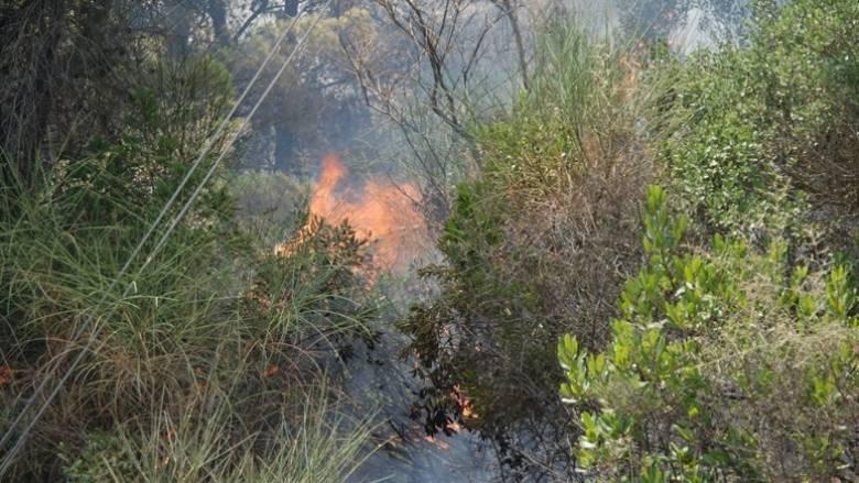 Μάχη με τις φλόγες σε δύο μέτωπα στην Κέρκυρα