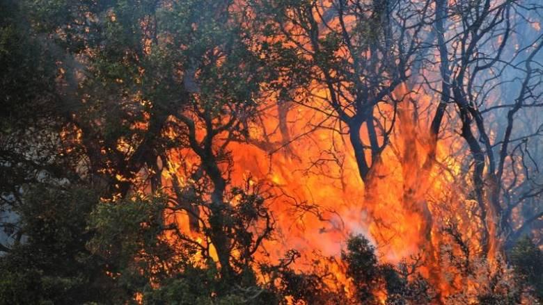 Υψηλός κίνδυνος πυρκαγιάς σε πολλές περιοχές της χώρας