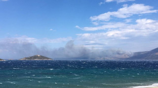 Κάρυστος: Πλησιάζει εξοχικές κατοικίες η φωτιά-Ενισχύονται οι δυνάμεις της Πυροσβεστικής