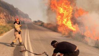 Μάχη με τις φλόγες και τους δυνατούς ανέμους στην Εύβοια