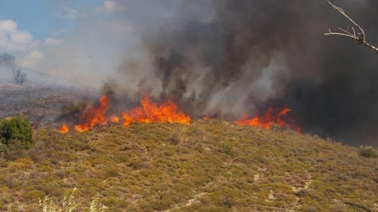 Φωτιά σε εξέλιξη στην Κεφαλλονιά