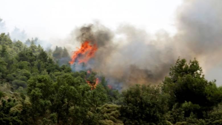 Πυροσβέστης έχασε τη ζωή του στη φωτιά της Βοιωτίας