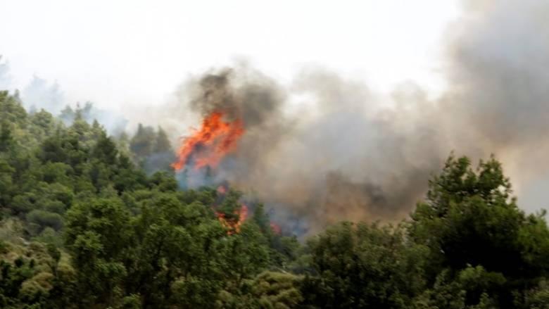 Εκτός ελέγχου μαίνεται η πυρκαγιά στο Δοξάτο Δράμας