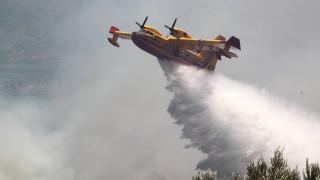 Υπό έλεγχο η φωτιά στην Προσύμνα Άργους