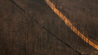 Πορτογαλία: Στάχτη 950.000 στρέμματα