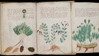 Το χειρόγραφο Βόινιτς, ή αλλιώς βιβλίο «μυστήριο» βγαίνει σε limited edition