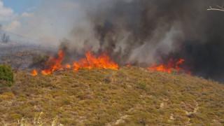 Σε εξέλιξη πυρκαγιά κοντά στο Αρχοντικό Γυθείου