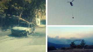Χίος - φωτιά: Έκαιγε ό,τι έβρισκε - Σε ύφεση αργά το βράδυ