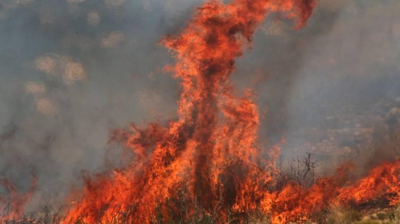 Υπό έλεγχο η φωτιά στο Ηράκλειο