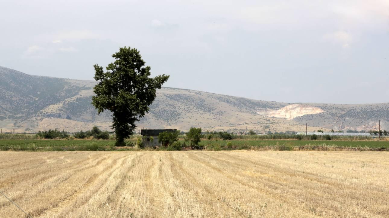 Έτοιμες οι Περιφέρειες να διαχειριστούν το νέο πρόγραμμα αγροτικής ανάπτυξης
