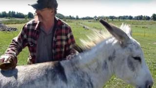 Ο κτηνοτρόφος που έκανε στροφή στη ζωή του και μετέτρεψε τη φάρμα σε καταφύγιο ζώων (pics & vid)
