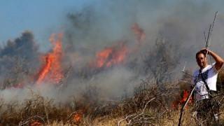 Εκκενώνεται οικισμός στη Θάσο-Σε τέσσερα μέτωπα μαίνεται η πυρκαγιά