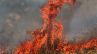 Υπό έλεγχο η φωτιά στο Άγιο Όρος