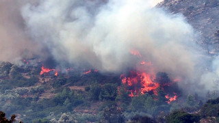 Πύρινη κόλαση στη Θάσο - Κάηκαν σπίτια - Ανεξέλεγκτο το μέτωπο (aud)