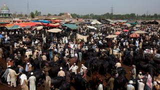 Επίθεση αυτοκτονίας σε χώρο προσευχής στο Πακιστάν