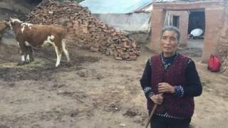 Κίνα: Σκότωσε τα τέσσερα παιδιά της λόγω φτώχειας