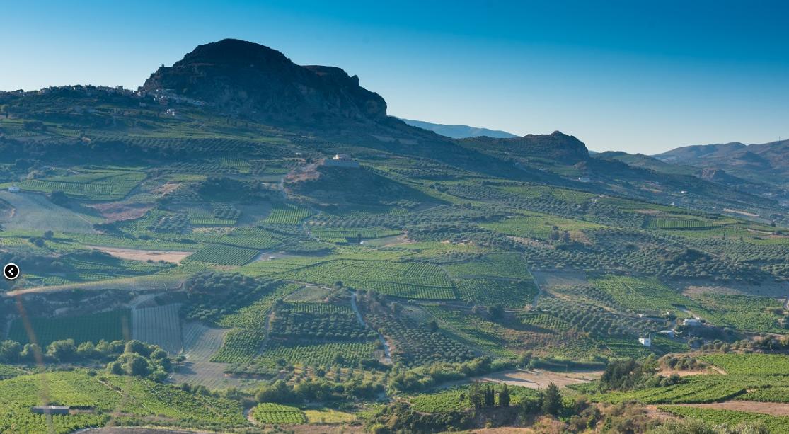 crete wines1