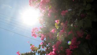 Καλοκαιρινός καιρός με άνοδο της θερμοκρασίας