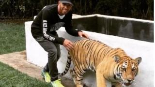 Ο Λούις Χάμιλτον προκαλεί την τύχη του, τρομάζοντας μία τίγρη (video)