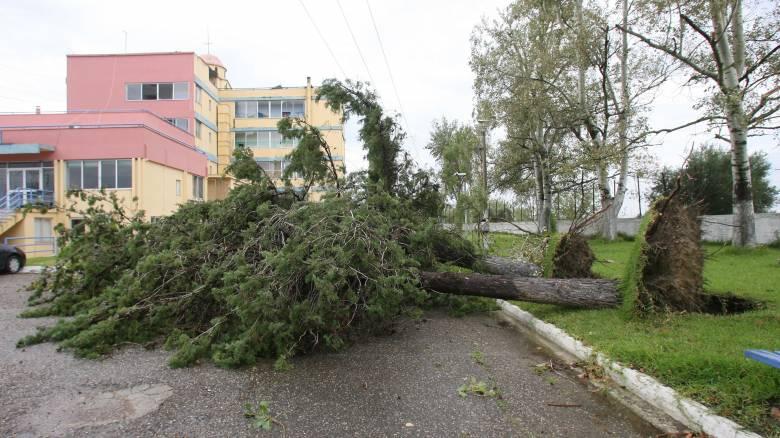 Άλλαξε ο καιρός: Ισχυροί άνεμοι, βροχές και ανεμοστρόβιλος προκαλούν χάος σε πολλές πόλεις