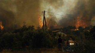 Χρηματοδότηση 39 νέων έργων για την αποκατάσταση περιοχών από τις πυρκαγιές του 2007